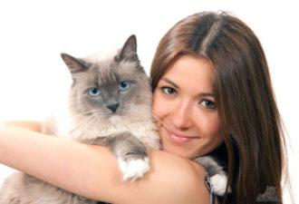 кошка и человек
