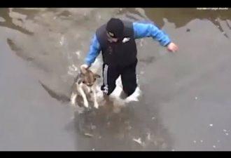 мужчина спасает собаку