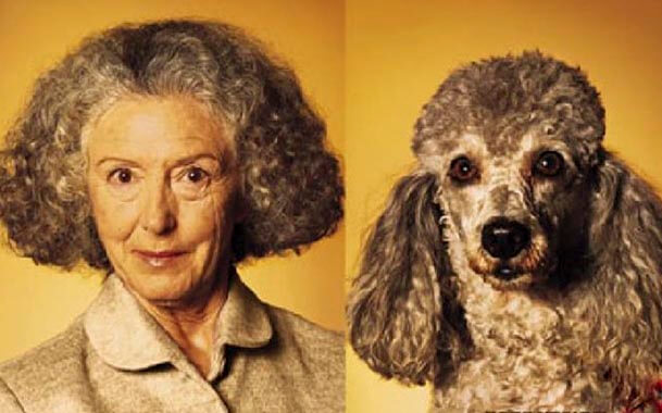 собака похожа на хозяина