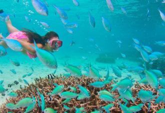 прогулка под водой